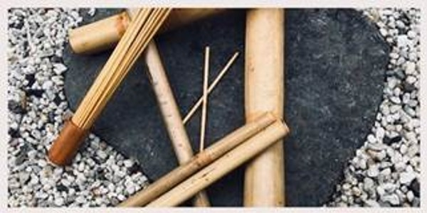Sunshine & Bamboo